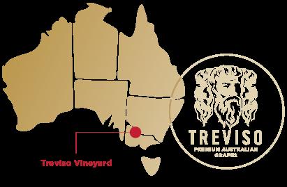 Treviso - Farm Map